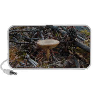 Mushroom Stretch Speaker