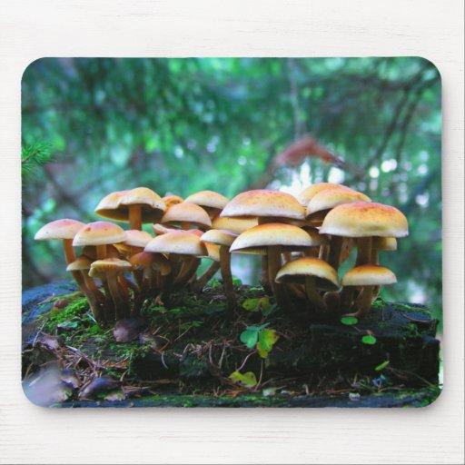 mushroom village mouse pad