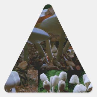 MUSHROOM : Wild Fungi Flowers ENJOY n SHARE JOY Triangle Sticker