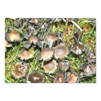 Mushroom with curled edges  Invitation