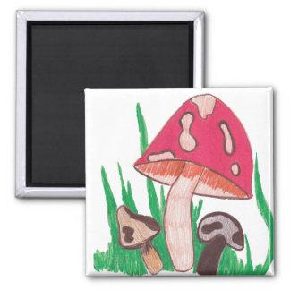 mushrooms 2 inch square magnet
