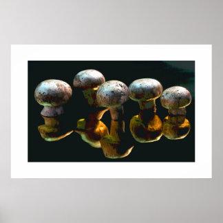 Mushrooms #2-Poster