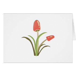 Mushrooms_Base Greeting Card
