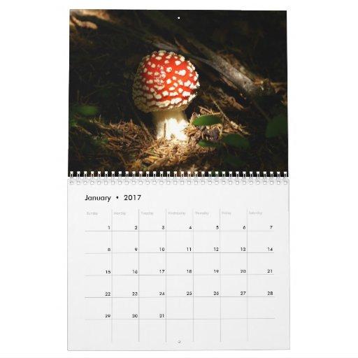 Mushrooms Calendar