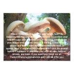 Mushrooms Dancing 5x7 Paper Invitation Card