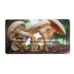 Mushrooms Dancing Shipping Label