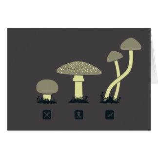 Mushrooms (food, poison, high) card