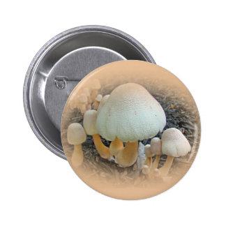 Mushrooms in Mulch - Leucoagaricus americanus Pinback Button