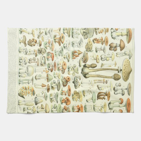 Mushrooms Kitchen Towels