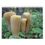 Mushrooms of Western Oregon, 2011 Calendar