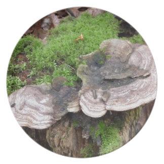 Mushrooms on a tree trunk dinner plate
