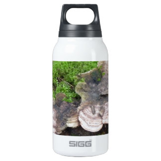 Mushrooms on a tree trunk thermos water bottle