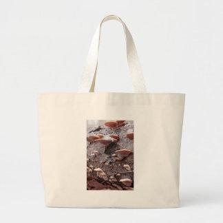 Mushrooms on Pine Log Bags