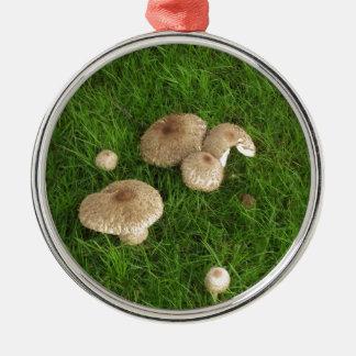 Mushrooms Round Metal Christmas Ornament