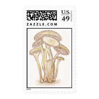Mushrooms Postage