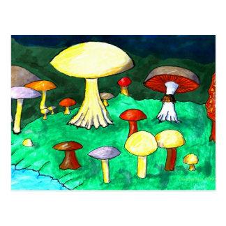 Mushrooms Postcard