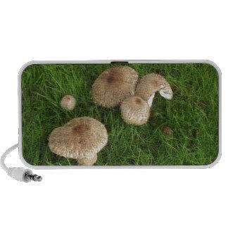 Mushrooms Speaker