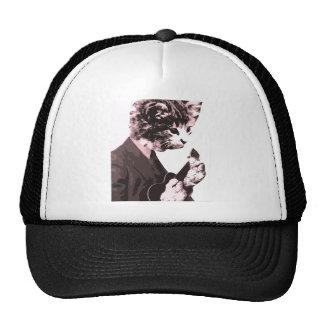 Music cat hats