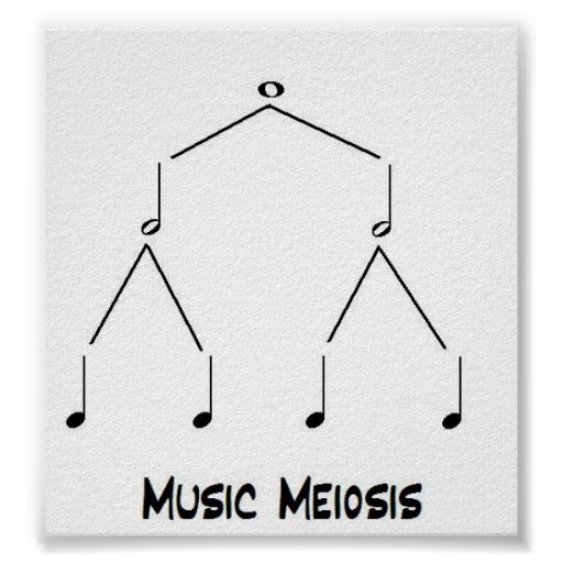 Music Meiosis Posters