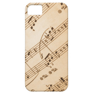 Music Notes Background iPhone SE/5/5s Case