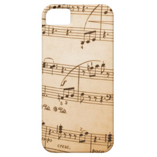 Music Notes iPhone SE/5/5s Case