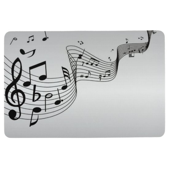 Music Notes on Silver Floor Mat