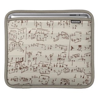Music notes sleeves for iPads
