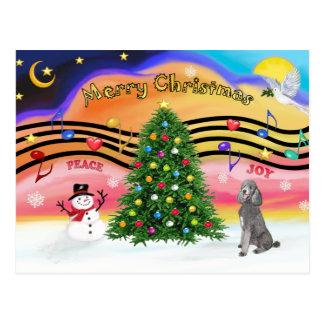 Música 2 del navidad - caniche (estándar de plata) postal