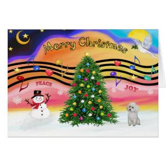 Música 2 del navidad - caniche juguete blanco felicitacion