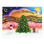 Música 2 del navidad - caniches (albaricoque y bla postal
