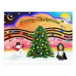 Música 2 del navidad - collie barbudo 9 postal