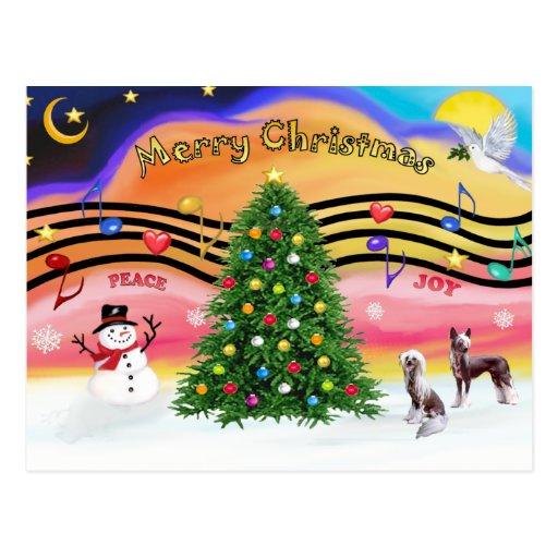Música 2 del navidad - con cresta chino (2 HL) Postal