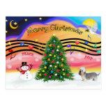 Música 2 del navidad - Dandie Dinmont (pimienta) Tarjetas Postales