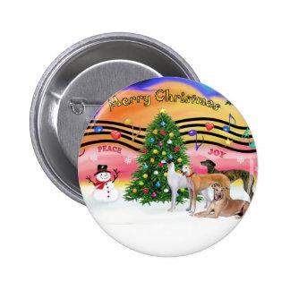 Música 2 del navidad - galgos (cuatro) pin redondo de 2 pulgadas