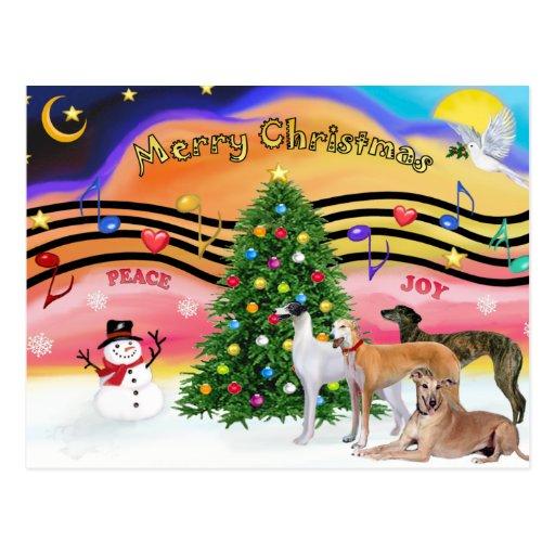 Música 2 del navidad - galgos (cuatro) tarjetas postales