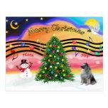 Música 2 del navidad - Keeshond Postal