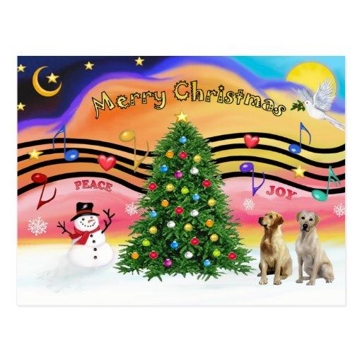 Música 2 del navidad - labradores retrieveres postal