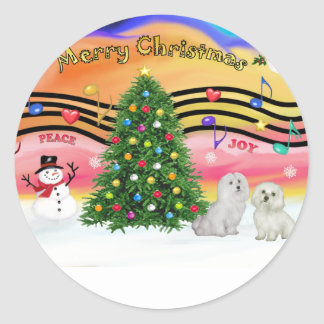 Música 2 del navidad - maltesa (dos) pegatina redonda