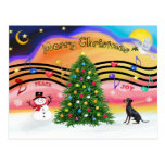 Música 2 del navidad - Manchester Terrier Postal