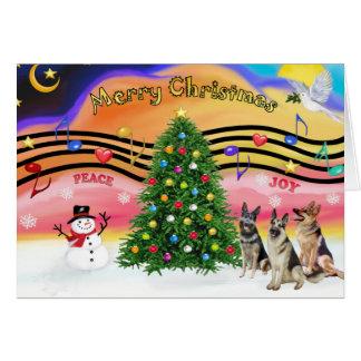 Música 2 del navidad - pastores alemanes (tres) tarjeta de felicitación