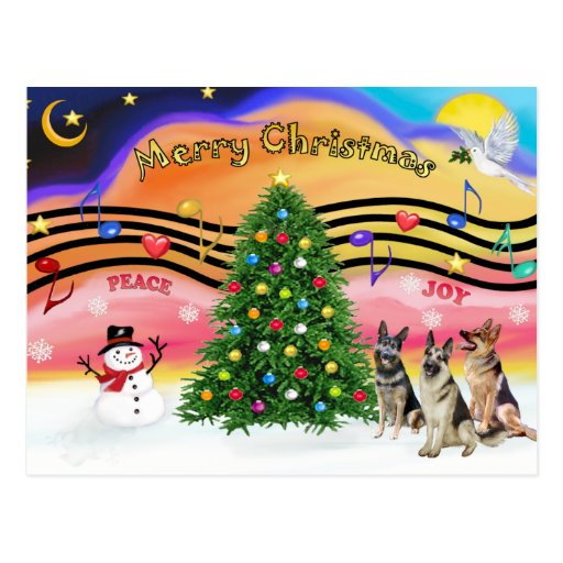 Música 2 del navidad - pastores alemanes (tres) tarjetas postales