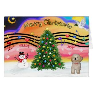 Música 2 del navidad - perrito de Havanese Tarjeta De Felicitación