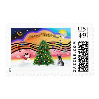 Música 2 del navidad - perrito del Schnauzer Timbre Postal