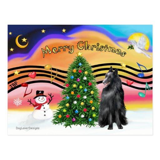 Música 2 del navidad - perro pastor belga postales