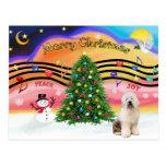 Música 2 del navidad - perro pastor inglés viejo 3 tarjetas postales