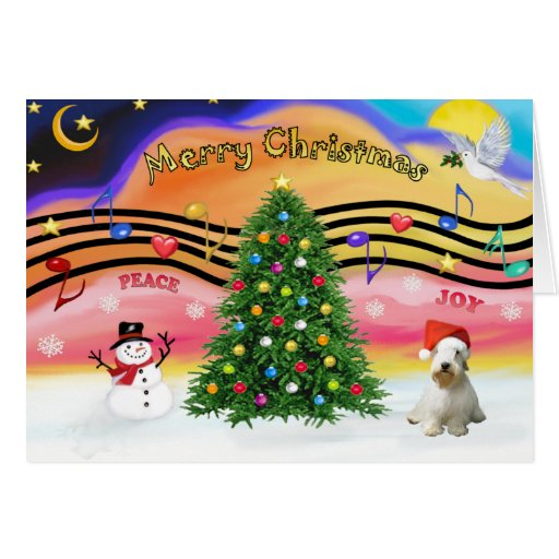 Música 2 del navidad - Sealyham Terrier (l) Tarjeta De Felicitación