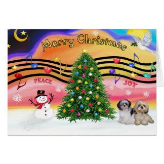 Música 2 del navidad - Shih Tzu par 2 Tarjeton