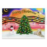 Música 2 del navidad - Terrier de trigo (ld) Felicitacion