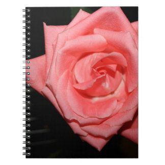 música color de rosa rosada de la parte posterior libro de apuntes con espiral