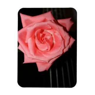 música color de rosa rosada de la parte posterior imán flexible